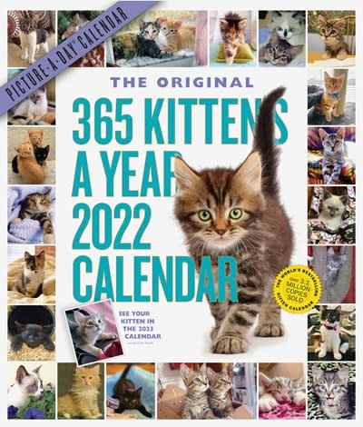 Workman Publishing Company 365 Kittens-A-Year Picture-A-Day Wall Calendar 2022