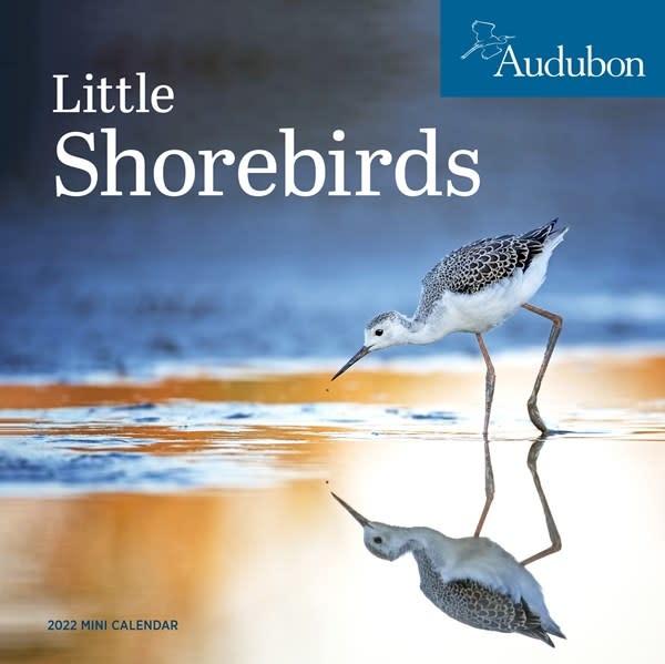 Workman Publishing Company Audubon Little Shorebirds Mini Wall Calendar 2022