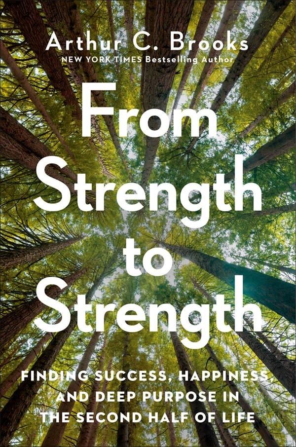Portfolio From Strength to Strength