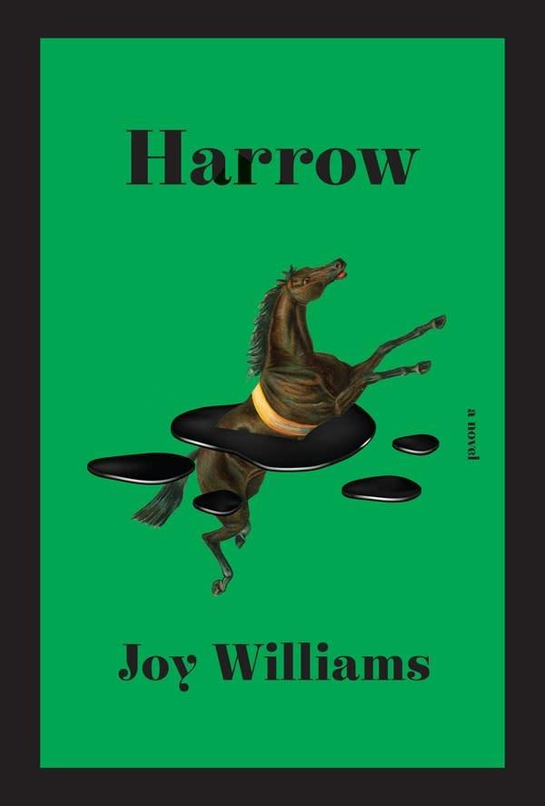 Knopf Harrow: A novel