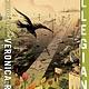 Katherine Tegen Books Divergent 03 Allegiant (Anniversary Edition)