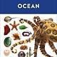 DK Children Ocean