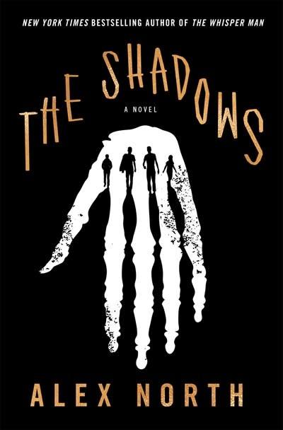 Celadon Books The Shadows: A novel