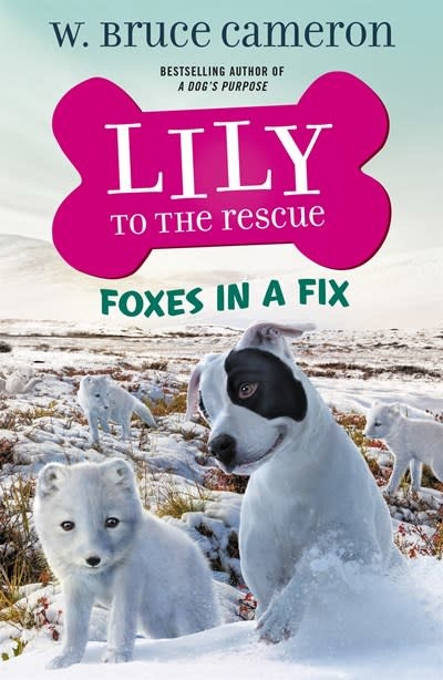 Starscape Lily to the Rescue: Foxes in a Fix