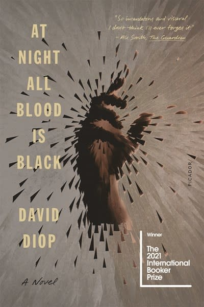 Picador At Night All Blood Is Black: A novel