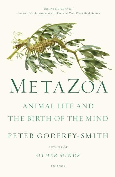 Picador Metazoa