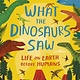 Bloomsbury Children's Books What the Dinosaurs Saw