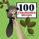 Button Books 100 Endangered Species