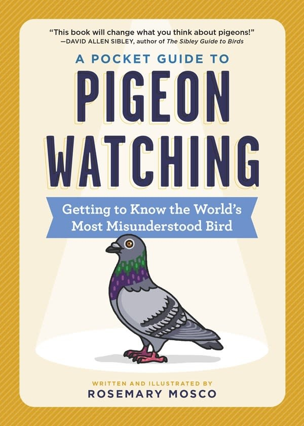 Workman Publishing Company A Pocket Guide to Pigeon Watching