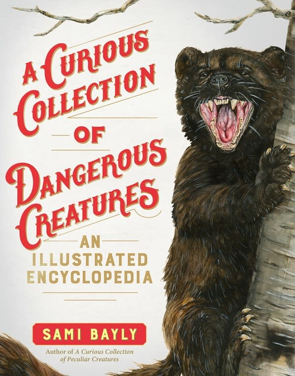 The Experiment A Curious Collection of Dangerous Creatures