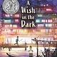 Candlewick A Wish in the Dark