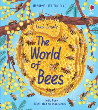 Usborne Look Inside the World of Bees (IR)