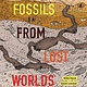 Fossils from Lost Worlds