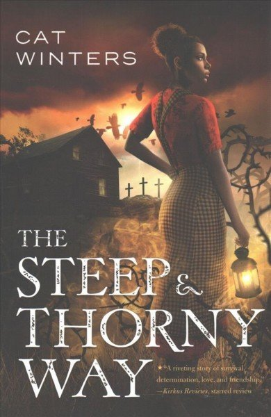 Amulet Paperbacks The Steep and Thorny Way