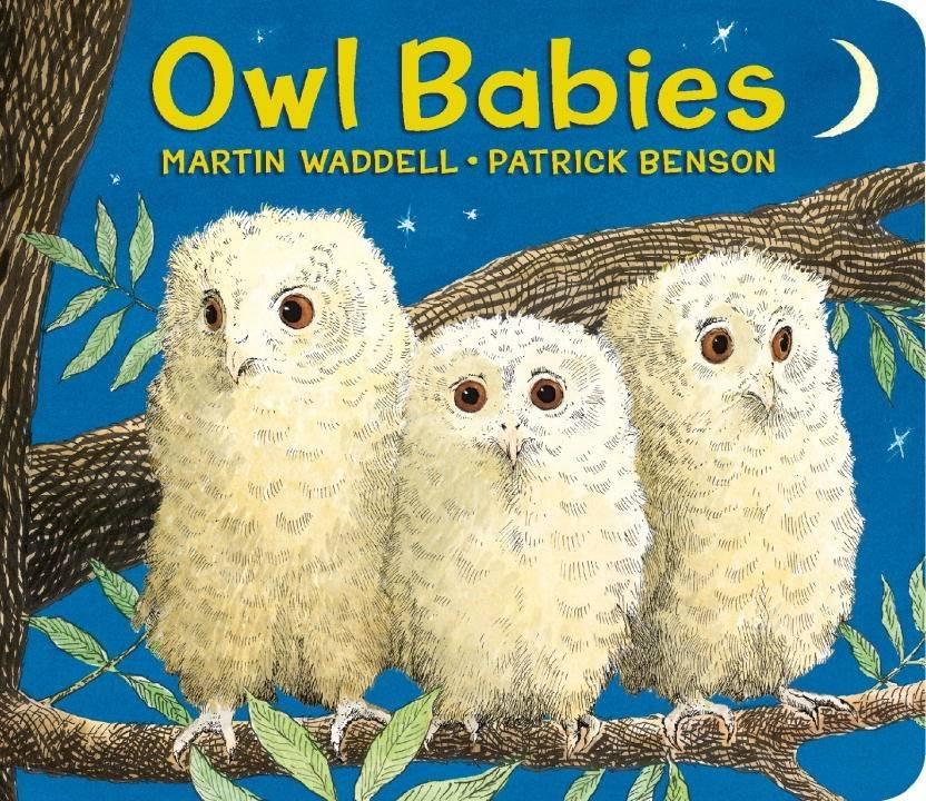 Candlewick Owl Babies