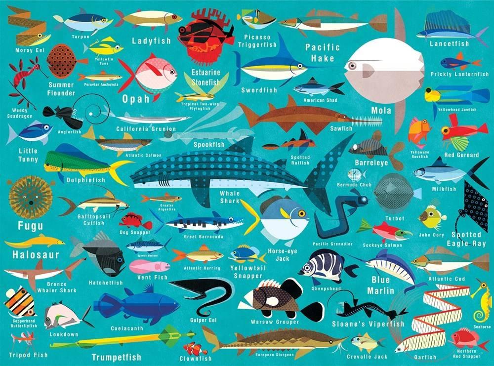 Mudpuppy Ocean Life Puzzle (1000-Piece Family Jigsaw)