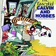 Calvin and Hobbes: The Essential Treasury