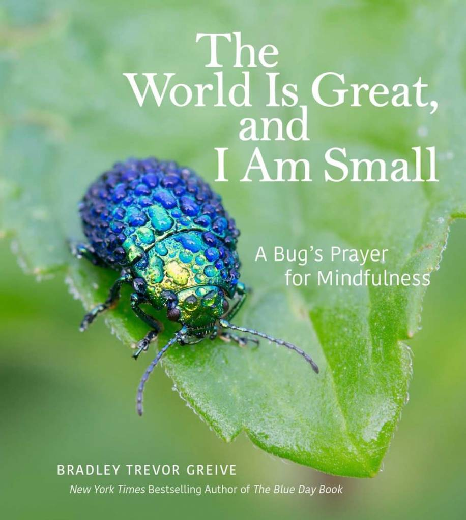 Andrews McMeel Publishing The World Is Great, and I Am Small: A Bug's Prayer...