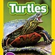 Nat Geo Readers: Turtles (Nat Geo Readers, Lvl 1)