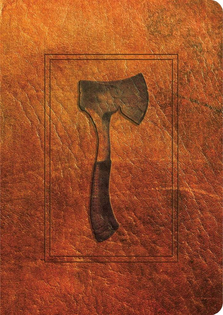 Simon & Schuster Books for Young Readers Brian's Sage 01 Hatchet