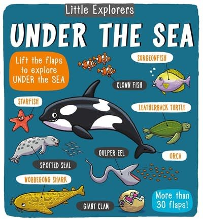 little bee books Little Explorers: Under the Sea