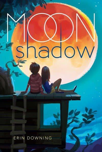 Aladdin Moon Shadow