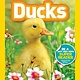 National Geographic Children's Books Ducks (National Geographic Readers, Lvl Pre-1)