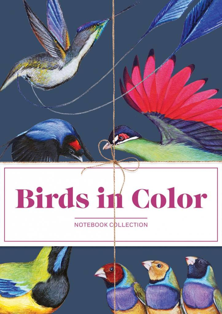 Chronicle Books Birds in Color Notebooks