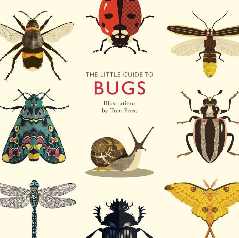 Quadrille Publishing The Little Guide to Bugs