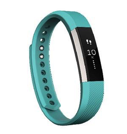 Fitbit FItbit Alta - Teal Large