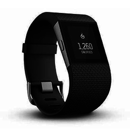 Fitbit FitBit Surge Superwatch Blk Small