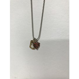 Chicago Bears Necklace with Mini Dog Tag & Bear Head