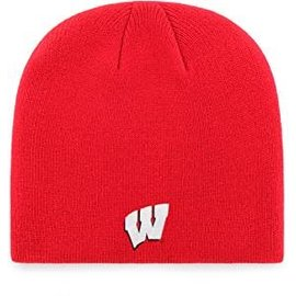 Wisconsin Badgers Youth red basic beanie hat