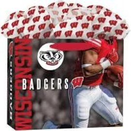 Wisconsin Badgers Medium Gift Bag