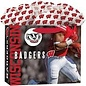 Wisconsin Badgers Medium Gift Bag