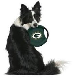 Little Earth Green Bay Packers Team Flying Disc Pet Toy