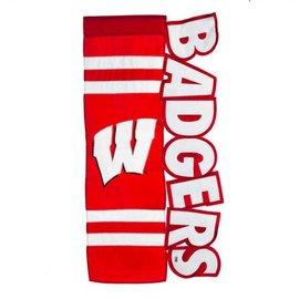 Evergreen Enterprises Wisconsin Badgers Applique Letters House Banner Flag