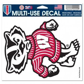 Wisconsin Badgers multi-use colored decal 5x6