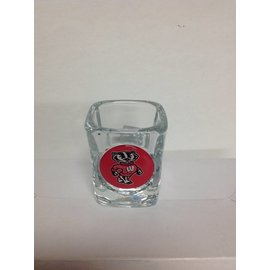 Wisconsin Badgers Square Shotglass with Bucky Logo
