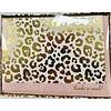 Cards - Boxed - Cheetah