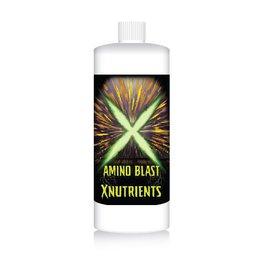 Xnutrients Xnutrients Amino Blast - Qt