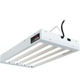 Agrobrite Agrobrite T5 2Ft, 4 Tube Fixture w/Bulbs