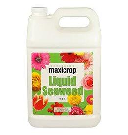 MaxiCrop Maxicrop Liquid Seaweed - 1 gal