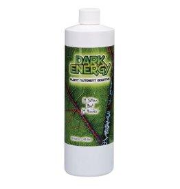 American Hydro Dark Energy Pint (12/Cs)