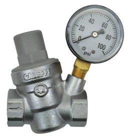 Dosatron Dosatron Pressure Regulator w/ Gauge - 3/4 in (FPT x FPT)