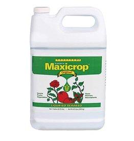 MaxiCrop Maxicrop Original Liquid Seaweed Quart (12/Cs)