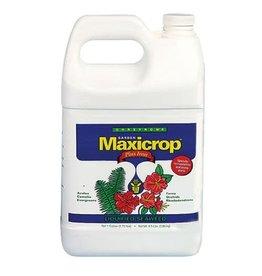 MaxiCrop Maxicrop Plus Iron Gallon (6/Cs)