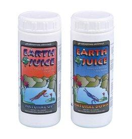 Earth Juice Natural Up 10 lb (4/Cs)