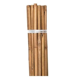 Bond Bond Natural Bamboo HD Stakes 6 ft (6/Bag)