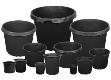 Pots & Containers